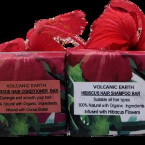 Hibiscus Shampoo & Conditioner Set